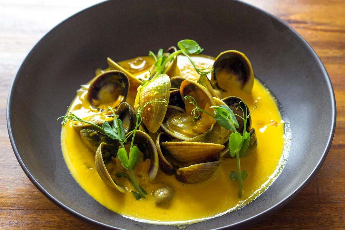 otago littleneck clams, canterbury saffron cream
